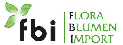 Flora Blumenimport